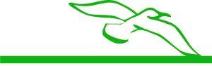 logo del personal coach Marcella Offedo, disegno di un gabbiano, tratto verde
